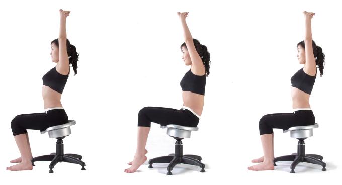 Husla Ergonomic Lower Back Exercise Chair Health Care Co